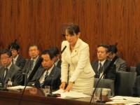 20140313内閣委員会質問等 015