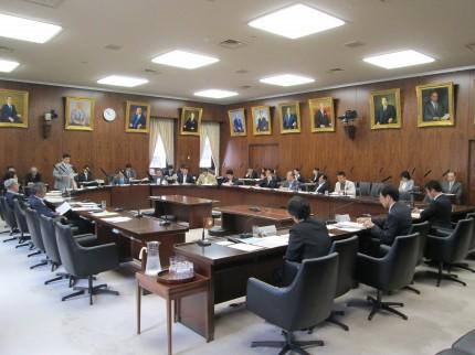20140603内閣委員会等 001